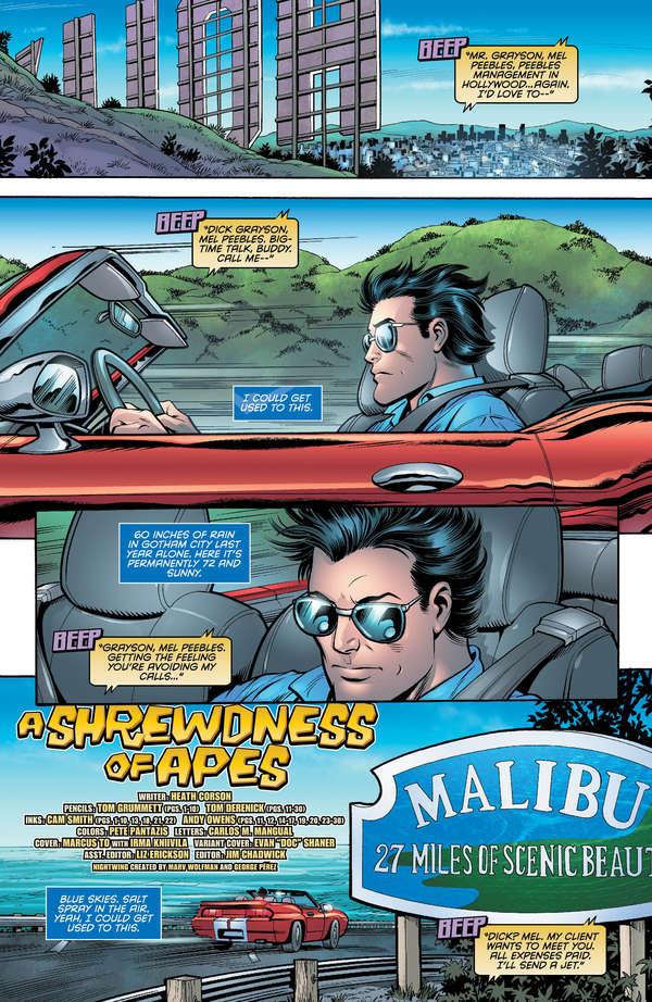Nightwing / Magilla Gorilla Special #1 Page 1
