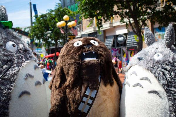 A Totoro Wookie?