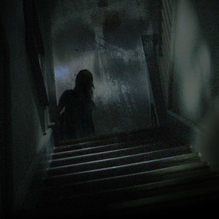 show_art_ParanormalWitness_S5.jpg