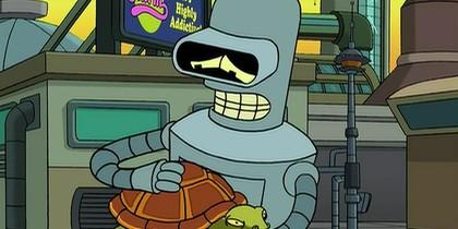 Bender Cares for Turtles