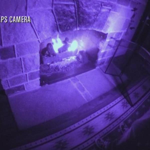 Bonus Scene: Faulty Fireplace