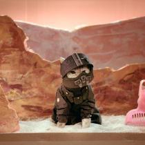 The Expanse Season 1 Recap: With Cats (Recat!)