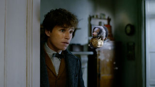 Newt Scamander, Niffler — Fantastic Beasts: The Crimes of Grindelwald