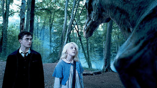 HARRY-POTTER-AND-THE-ORDER-OF-THE-PHOENIX_Movies_July