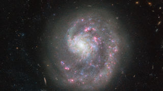NGC 4625, a relatively nearby dwarf spiral galaxy with an asymmetric spiral structure. Credit: ESA/Hubble & NASA