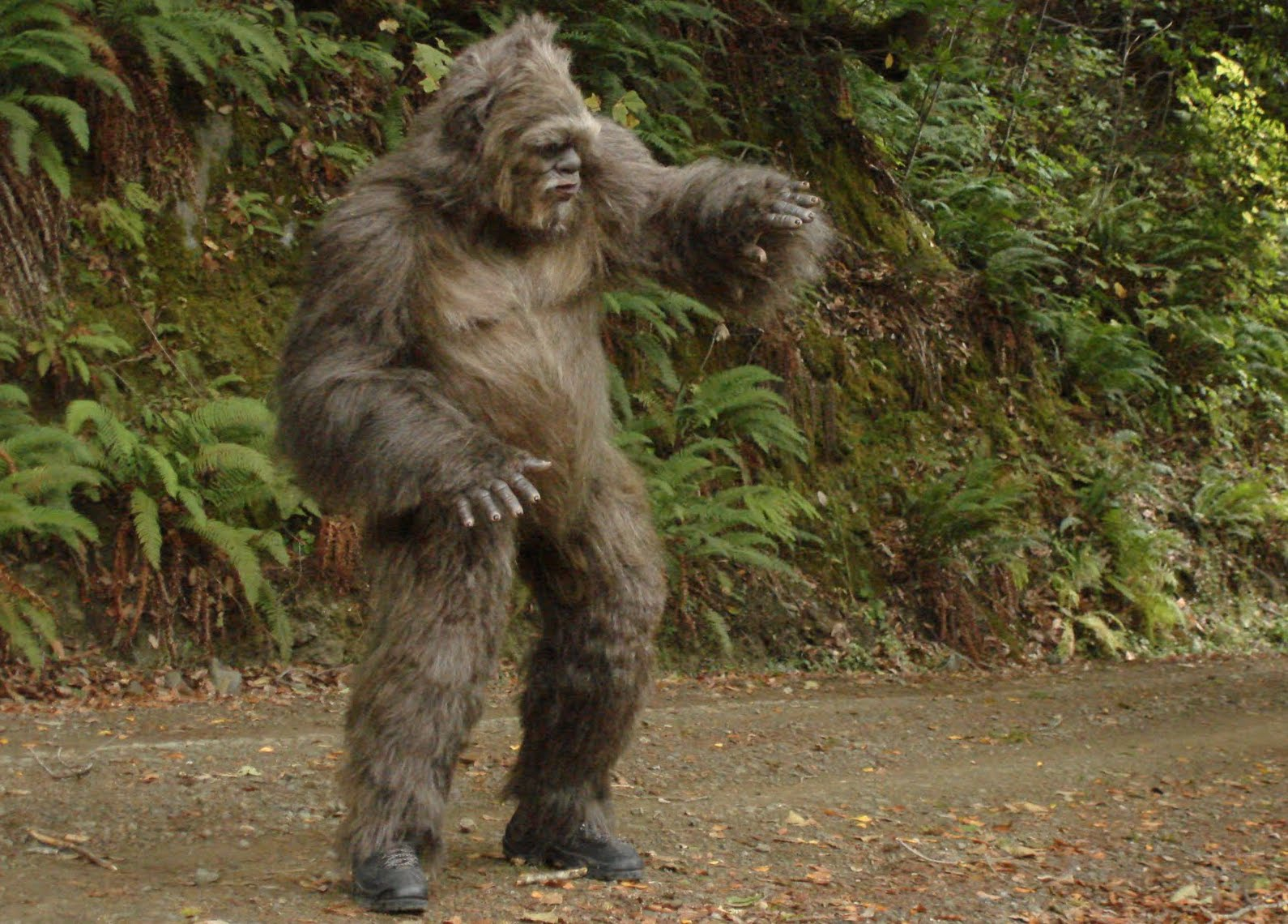 Scientists claim theyve used dna tests to prove bigfoot doesnt scientists claim theyve used dna tests to prove bigfoot doesnt exist syfy wire sciox Images