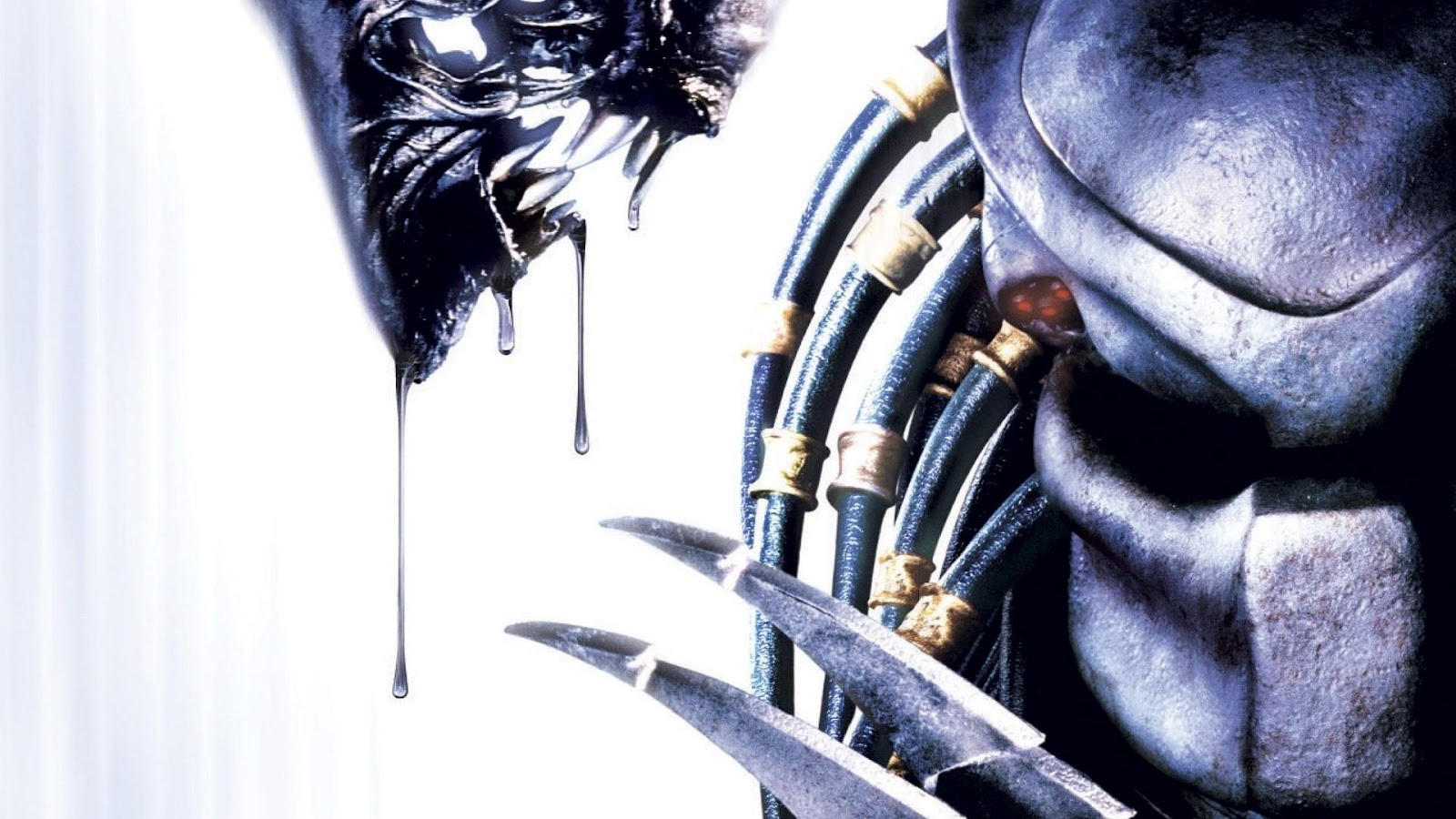 Here S What Alien Vs Predator S Original Writer Had To Say About