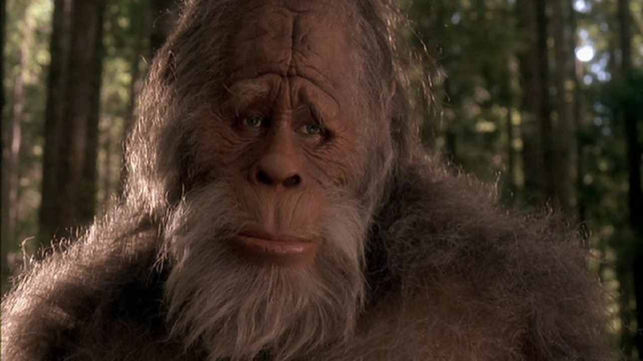 Bigfoot: a scary reality or a silly joke