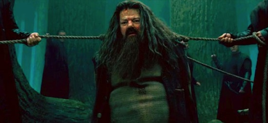 http://www.blastr.com/sites/blastr/files/images/hagrid-harry-potter-and-the-deathly-hallows-part-2.jpg