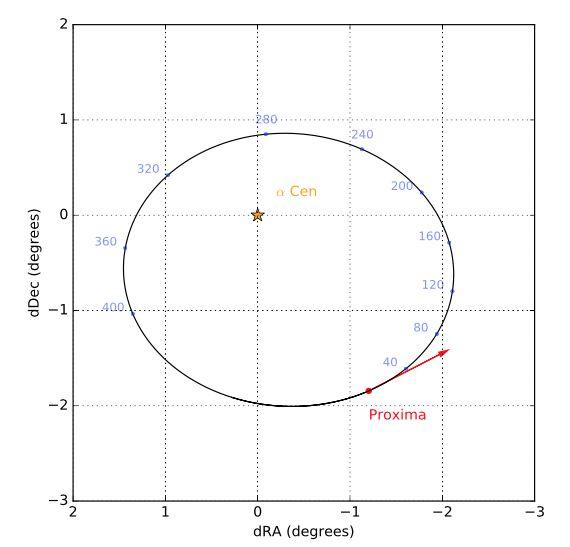 The orbit of Proxima
