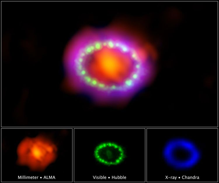 Supernova 1987A ring in visible, radio, and X-rays