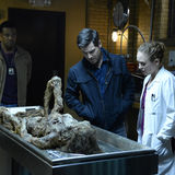 "Grimm's Episode 605 - ""The Seven Year Itch"""
