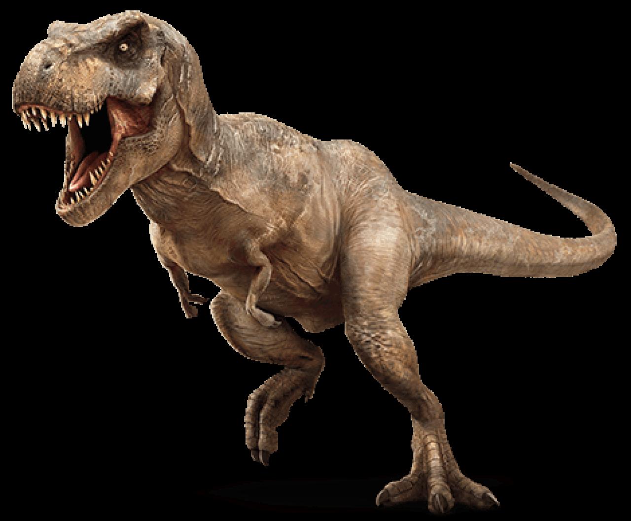 T rex discount coupons