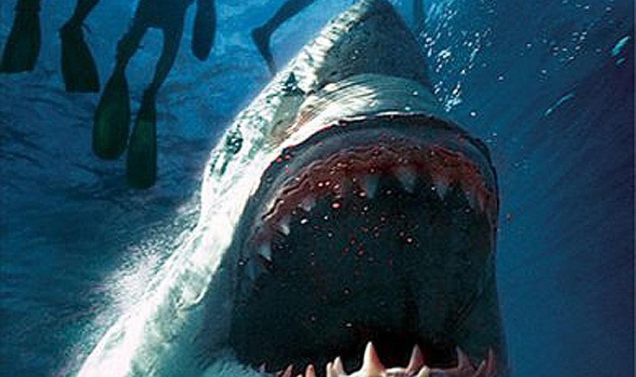 9 scary (and sometimes silly) shark props from movies and ...