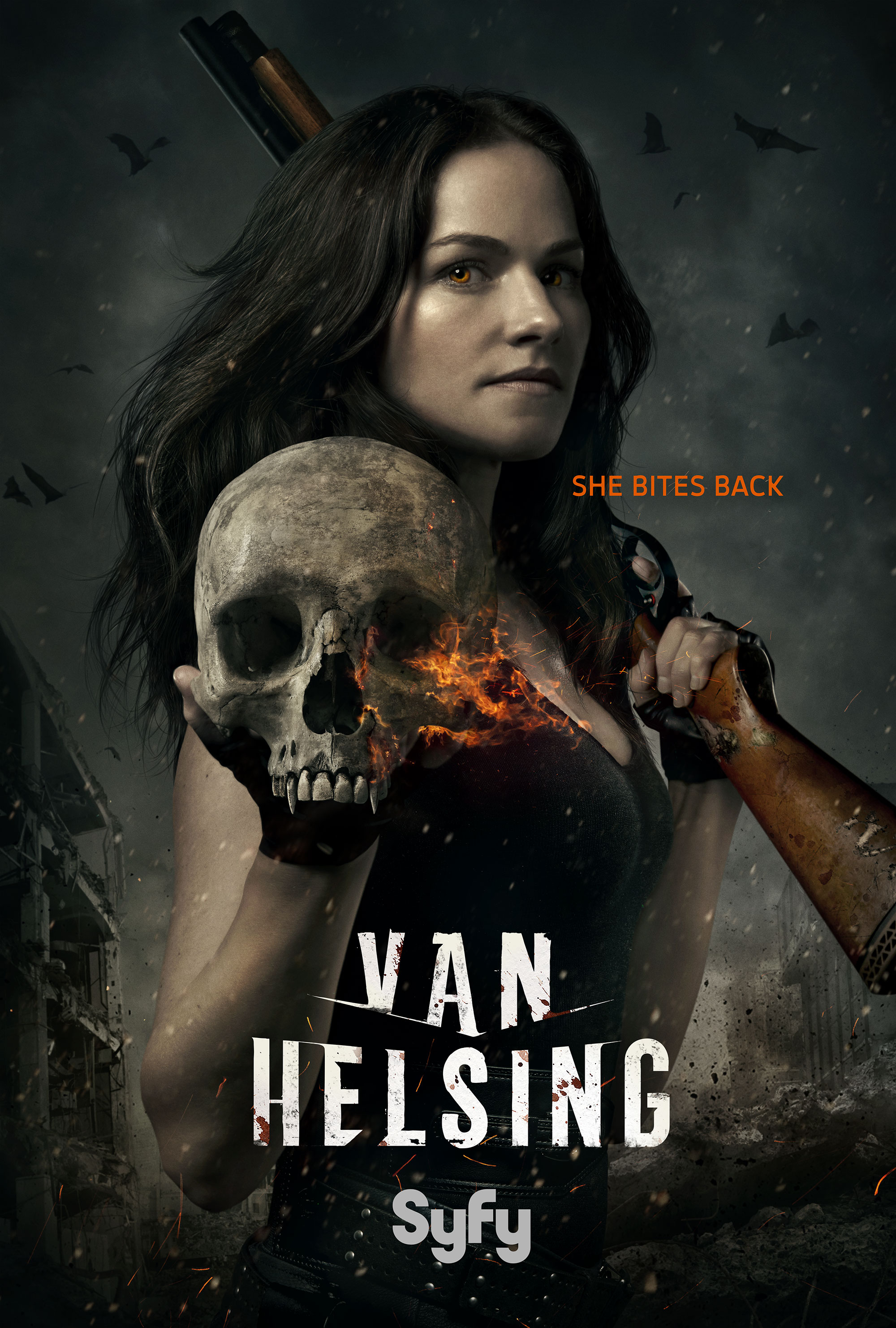van_helsing_poster_notunein.jpg